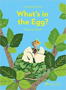 what is in the egg pop up book