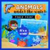 sea animals guessing